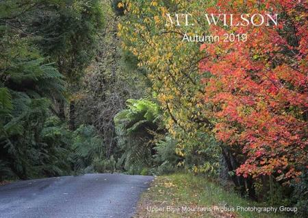 2019-4-23mt-wilson60
